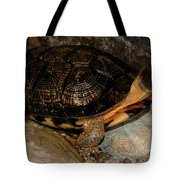 Turtle Time On The Rocks Tote Bag