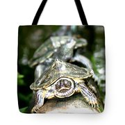 Turtles In A Row Tote Bag