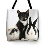 Tuxedo Kitten With Black Dutch Rabbit Tote Bag