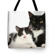 Tuxedo Mother Cat And Kitten Tote Bag