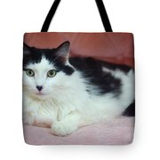 Tuxy In Repose Tote Bag