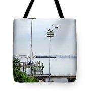 Twin Birdhouses Tote Bag