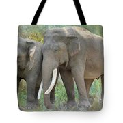Twin Elephants Tote Bag