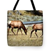 Twins And Mother Tote Bag