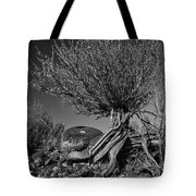 Twisted Beauty - Bw Tote Bag