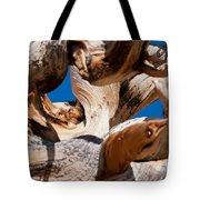 Twisted Bristlecone Pine Tote Bag