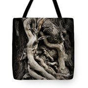 Twisted Dreams Tote Bag by Mary Machare