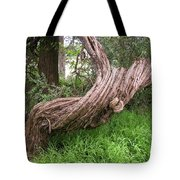 Twisted Tree 1123 Tote Bag