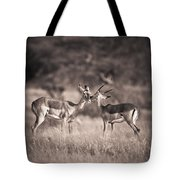 Two Antelopes Together In A Field Tote Bag