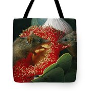 Two Australian Honey Possums Feed Tote Bag