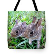Two Baby Bunnies Tote Bag