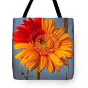 Two Color Gerbera Daisy Tote Bag