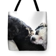 Two Cute Tote Bag by Larry Ricker