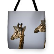 Two Giraffe Heads Side By Side Kenya Tote Bag