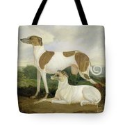 Two Greyhounds In A Landscape Tote Bag