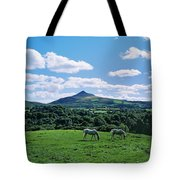 Two Horses Grazing In A Field Tote Bag