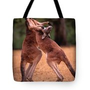 Two Kangaroos Appear To Be Dancing Tote Bag
