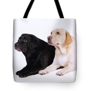 Two Labs Tote Bag