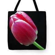 Two Lip Love Tote Bag