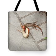 Two Lizards Are Fighting Tote Bag