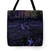 Two Moons Tote Bag