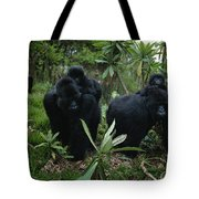 Two Mother Gorillas Carrying Tote Bag
