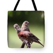 Two Offspring Tote Bag