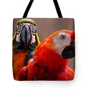 Two Parrots Closeup Tote Bag