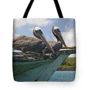 Two Pelicans Pelecanus Occidentalis On Tote Bag