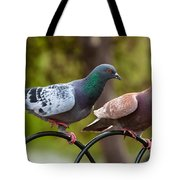 Two Pigeons Tote Bag