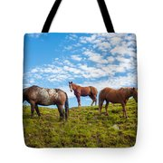 Two Quarters And An Appaloosa Tote Bag
