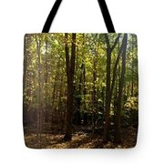 Two Roads Diverged Tote Bag
