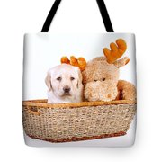 Two Toys Tote Bag