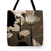 Two Waterlilies Sepia Tote Bag