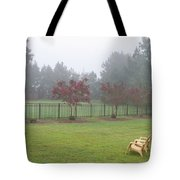 Two Yellow Chairs Tote Bag