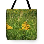 Two Yellow Wildflowers Tote Bag