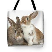 Two Young Rabbits Tote Bag