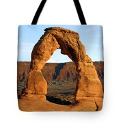 Ultimate Arch Tote Bag