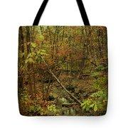 Unami Creek Feeder Stream In Autumn - Green Lane Pa Tote Bag