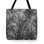 Under The Canopy Tote Bag