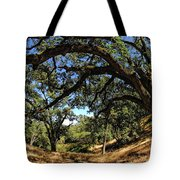 Under The Oak Canopy Tote Bag