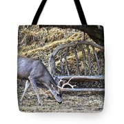 Under The Old Apple Tree Tote Bag