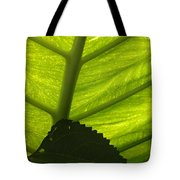 Underneath The Banana Plant Leaf Tote Bag