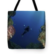 Underwater Photographer At The Entrance Tote Bag