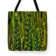Unripened Wheat Tote Bag