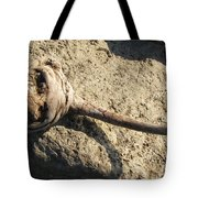 Unusual Driftwood Tote Bag
