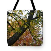 Up There Tote Bag