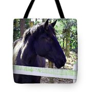 Upclose And Personal Tote Bag