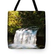 Upper Butte Creek Falls 3 Tote Bag