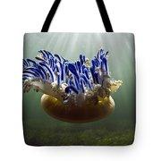 Upside-down Jellyfish Cassiopea Sp Tote Bag